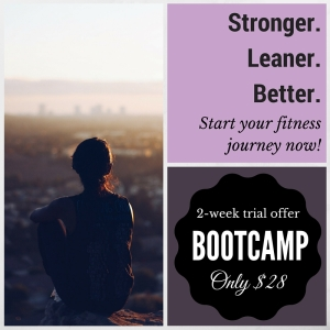 Bootcamp Special Offer $28